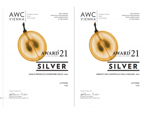 SILVER MEDAL – AWC VIENNA 2021